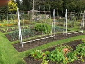 Kibworth Allotment Society